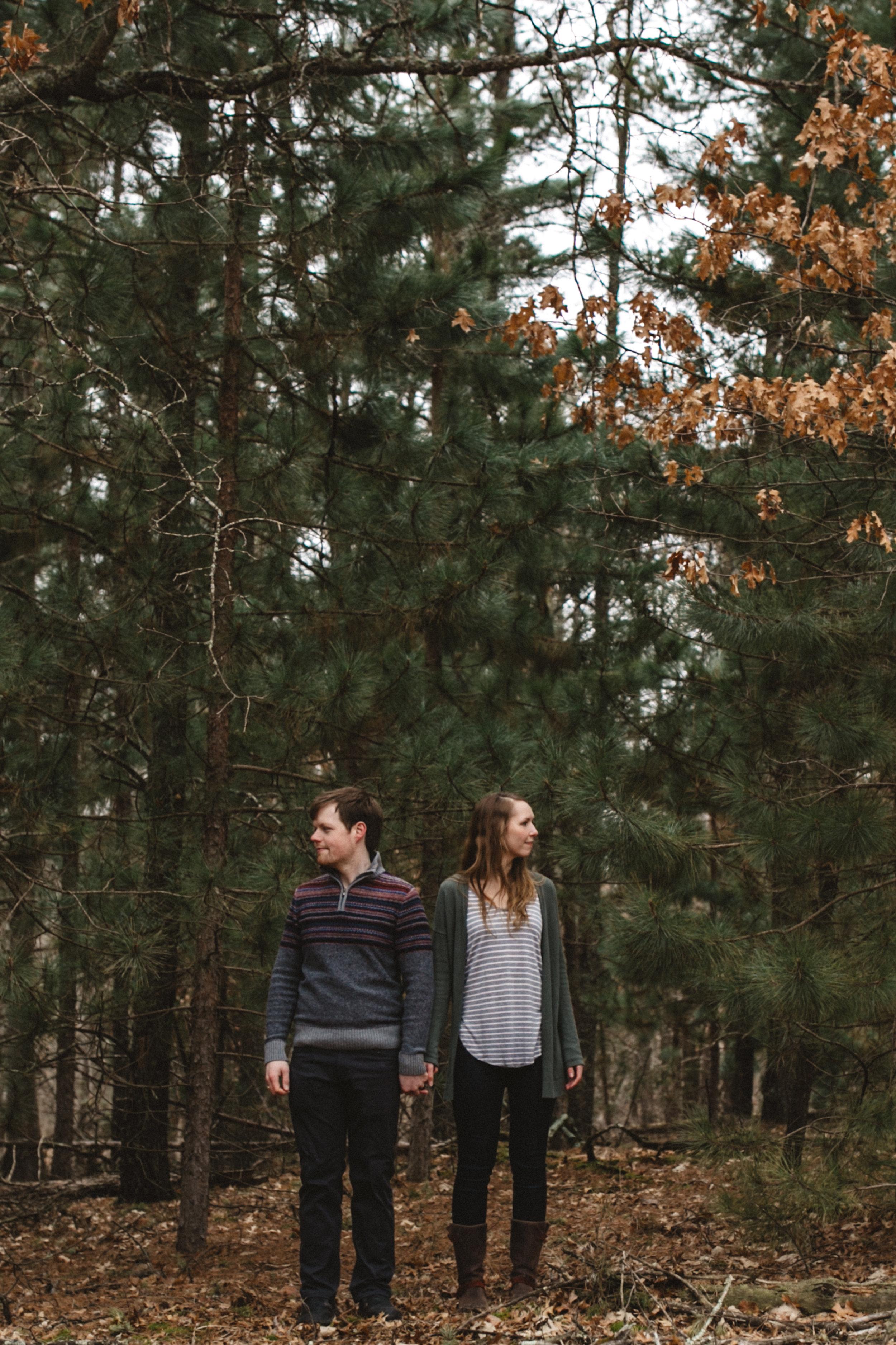 Northland Arboretum engagement session by Britt DeZeeuw photography, fine art wedding and engagement photographer in Brainerd Minnesota