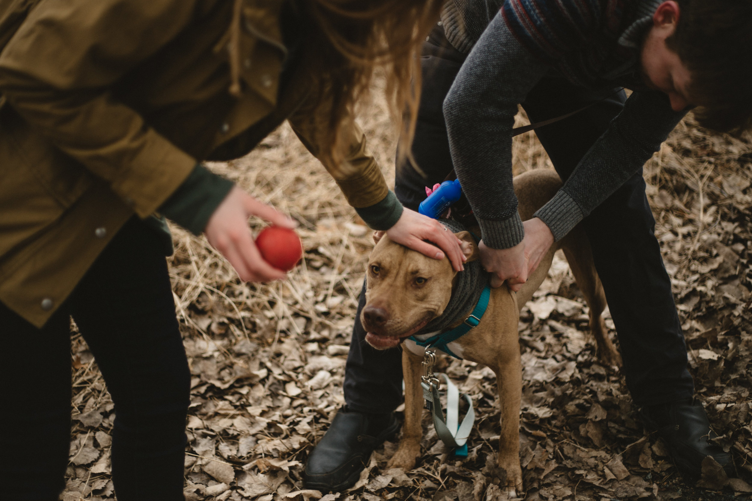 Lifestyle engagement session with dog in Brainerd Minnesota photographed by Britt DeZeeuw