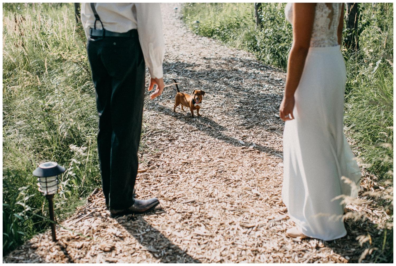 Lakeside wedding with weiner dog in bow tie in Brainerd MN