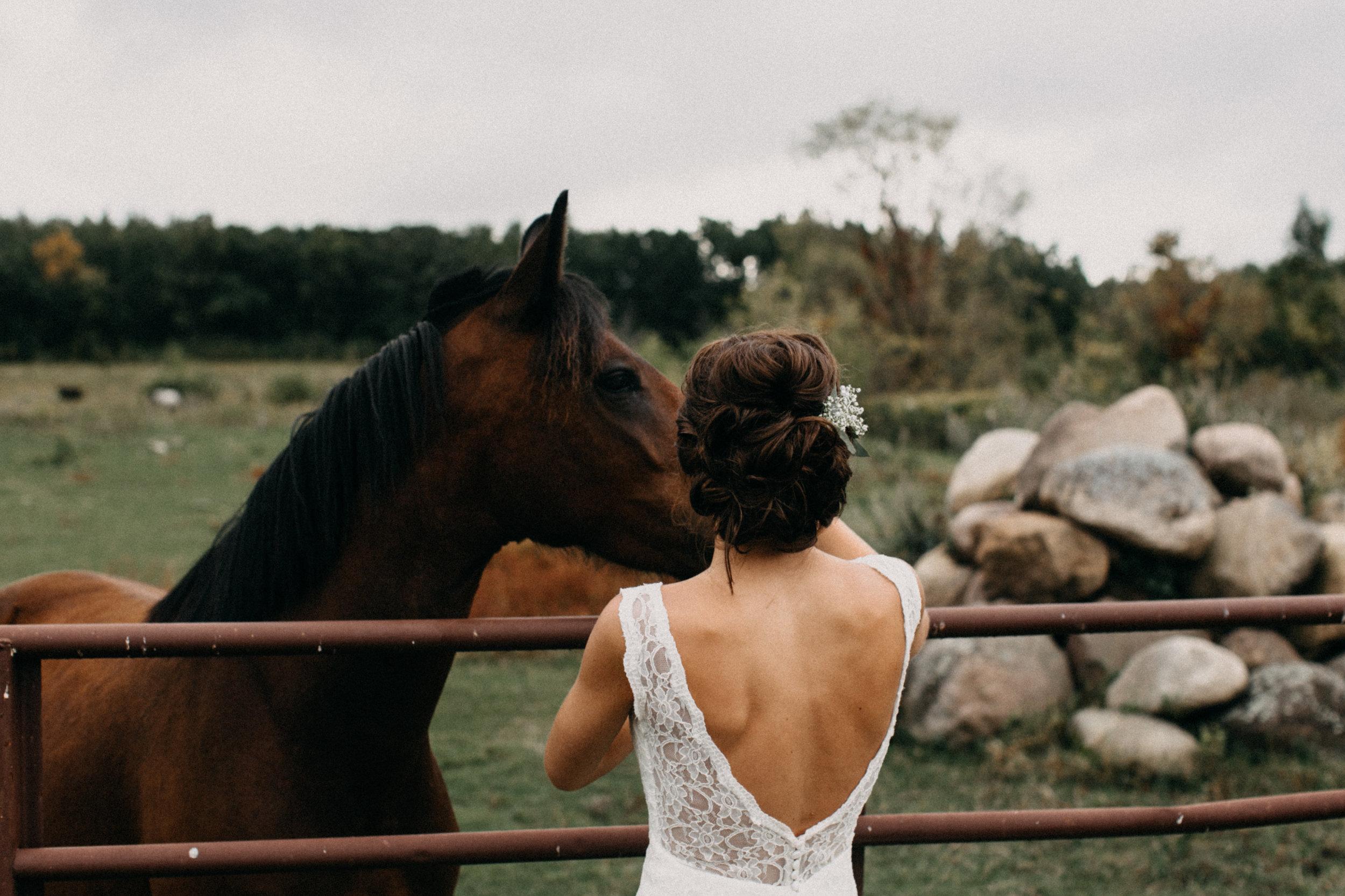 Intimate family farm wedding in Brainerd Minnesota