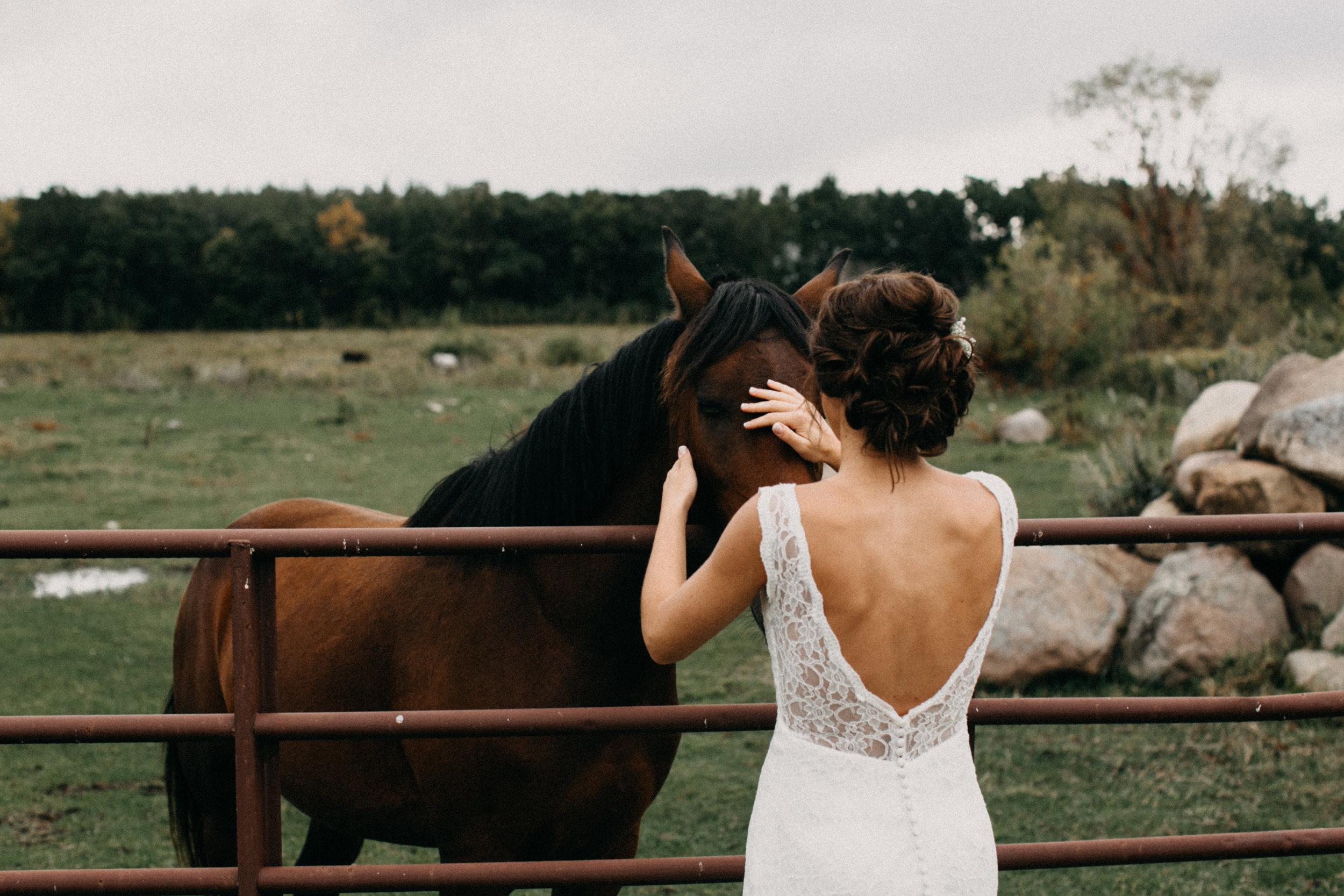 Farm wedding in Minnesota