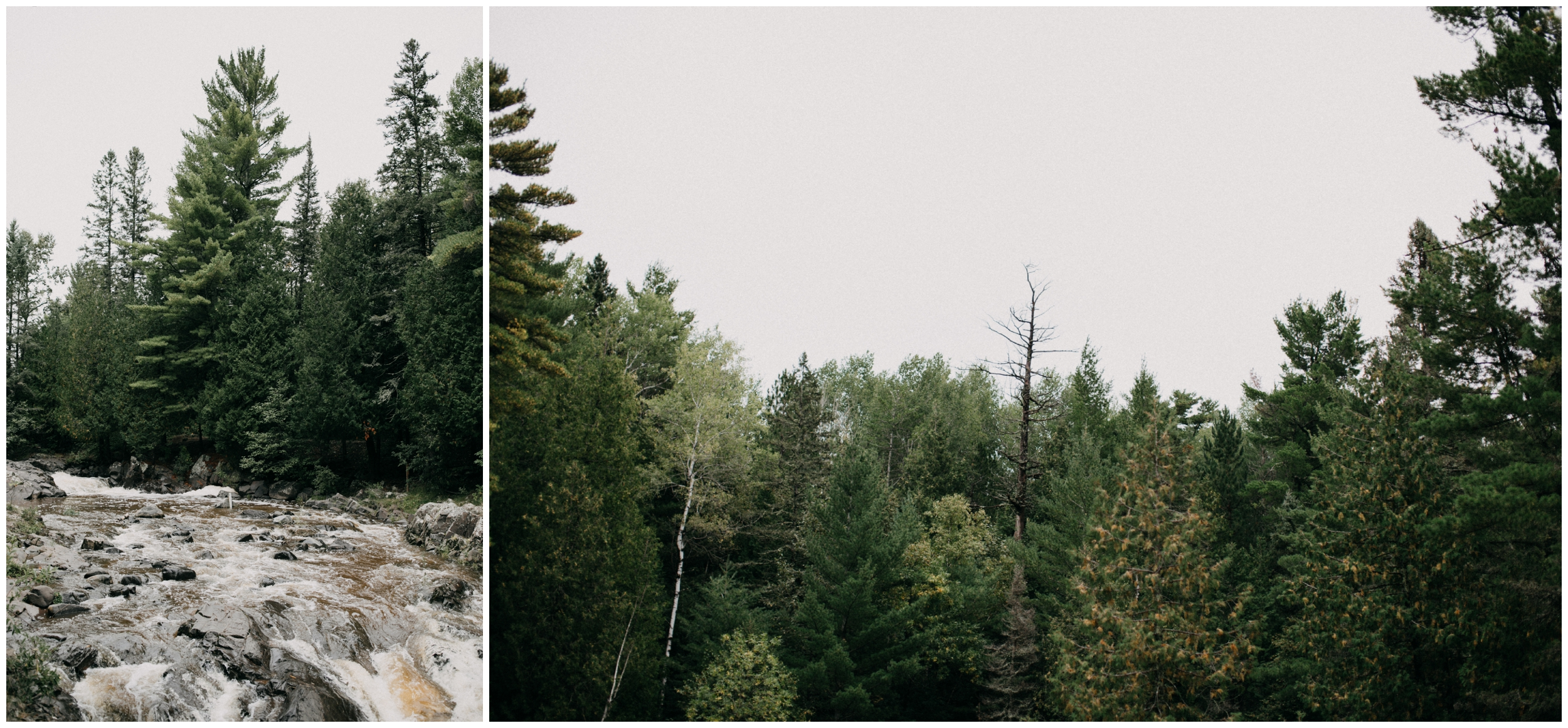 Duluth elopement in the woods