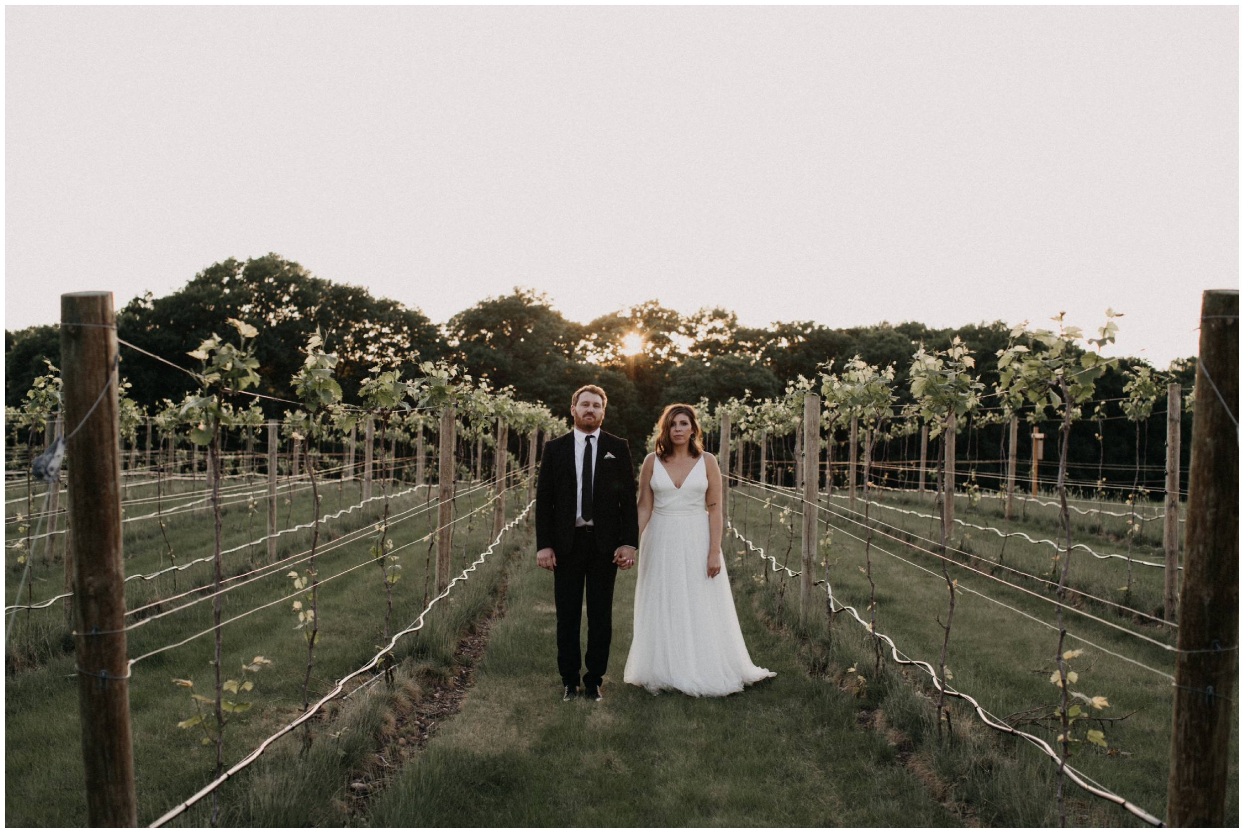 Vineyard wedding at 7 vines winery