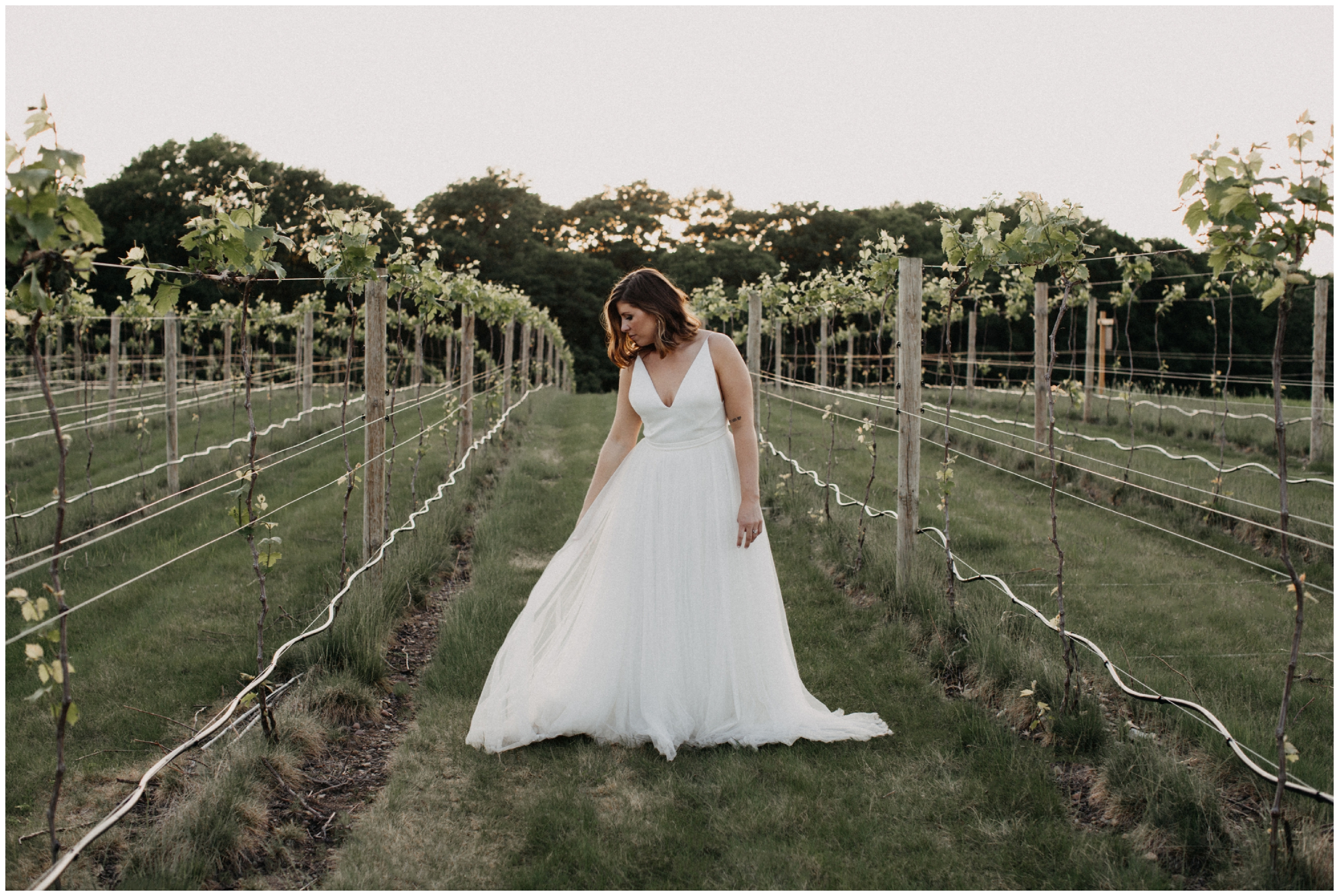 Bride posing in vineyard at 7 vines winery