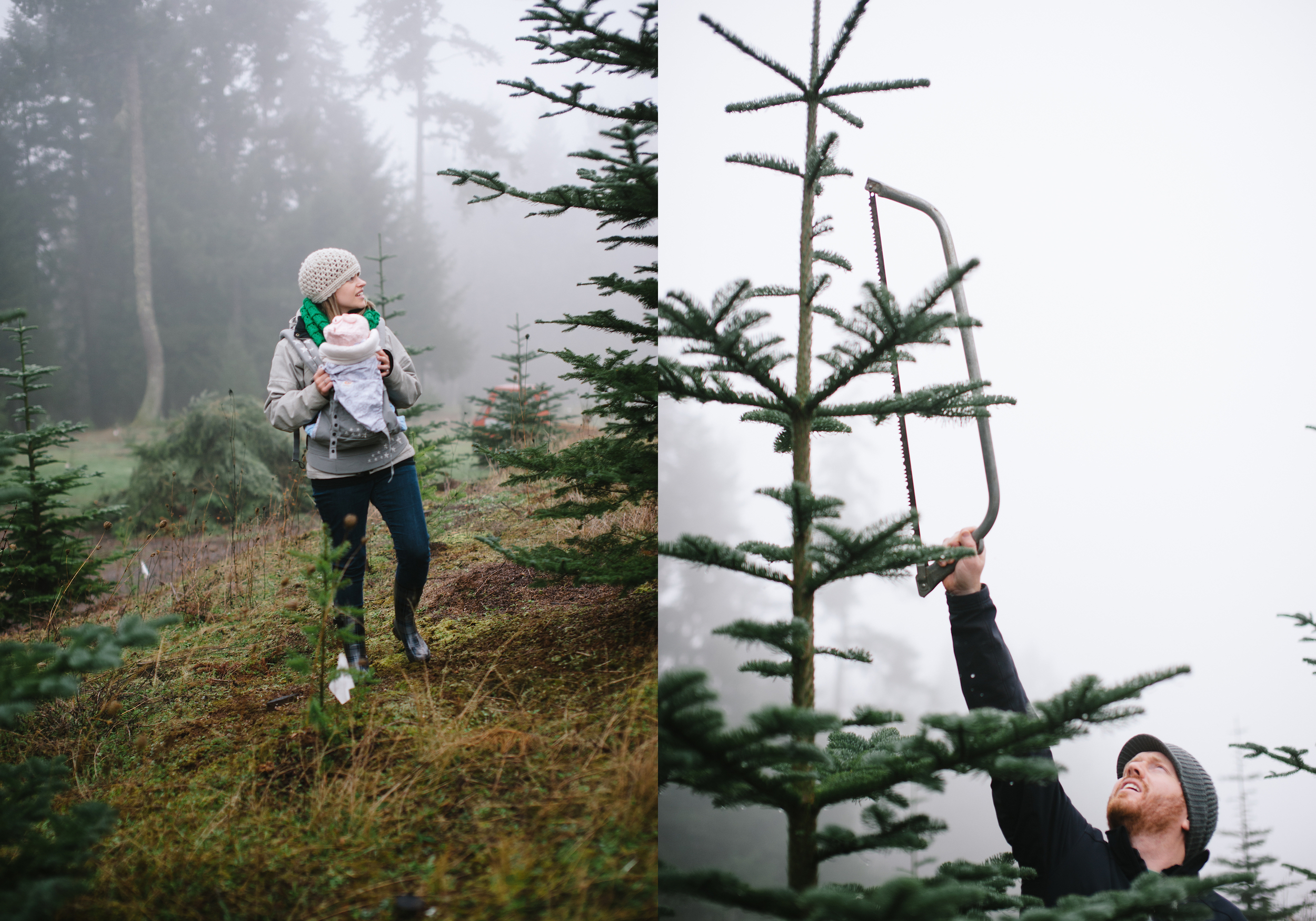 christmas_tree_cutting_52.jpg