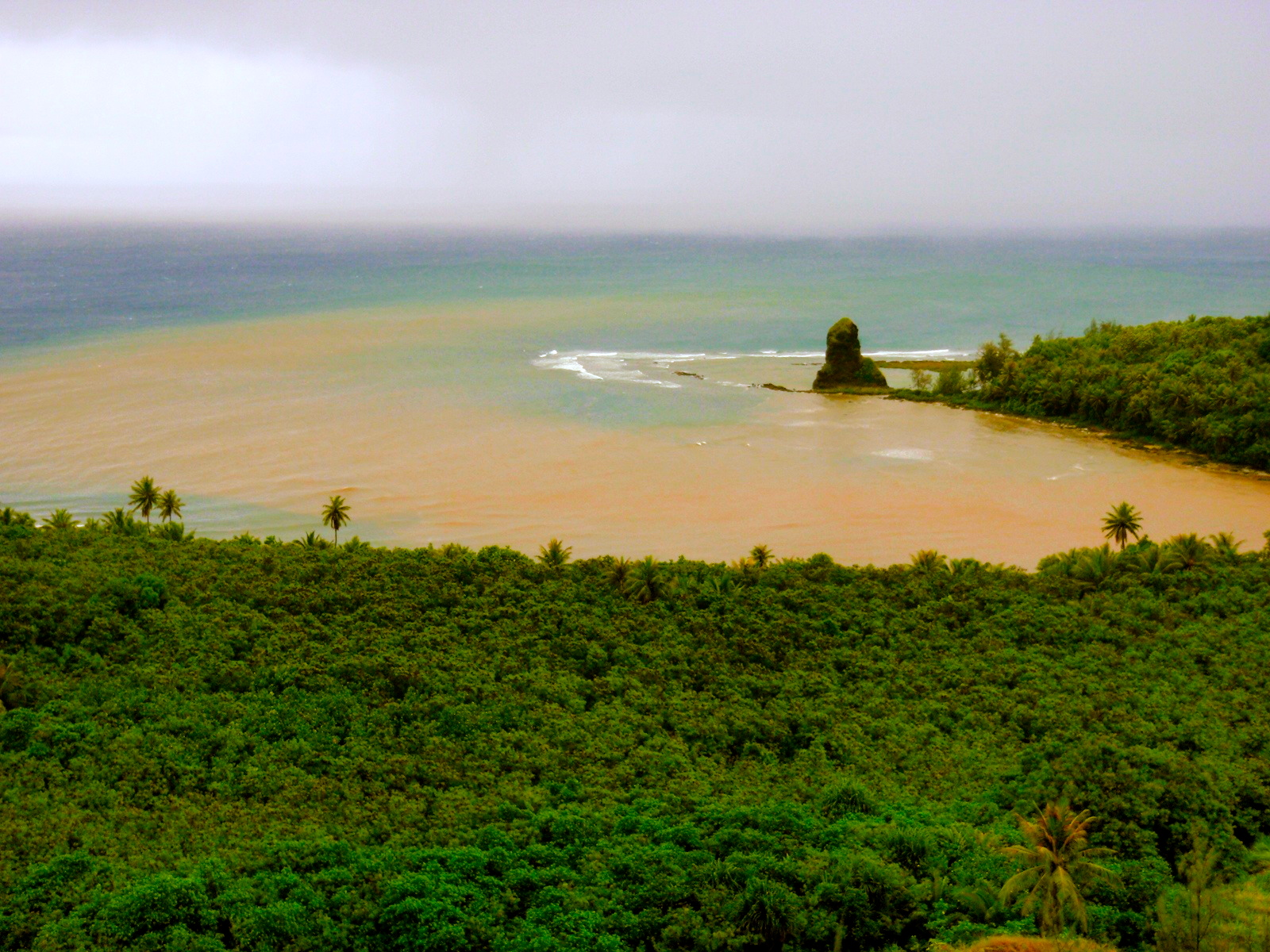 Sediment flowing into Fouha Bay, Guam after a heavy rain event. Photo by J. Lawrence- USDA NRCS PIA