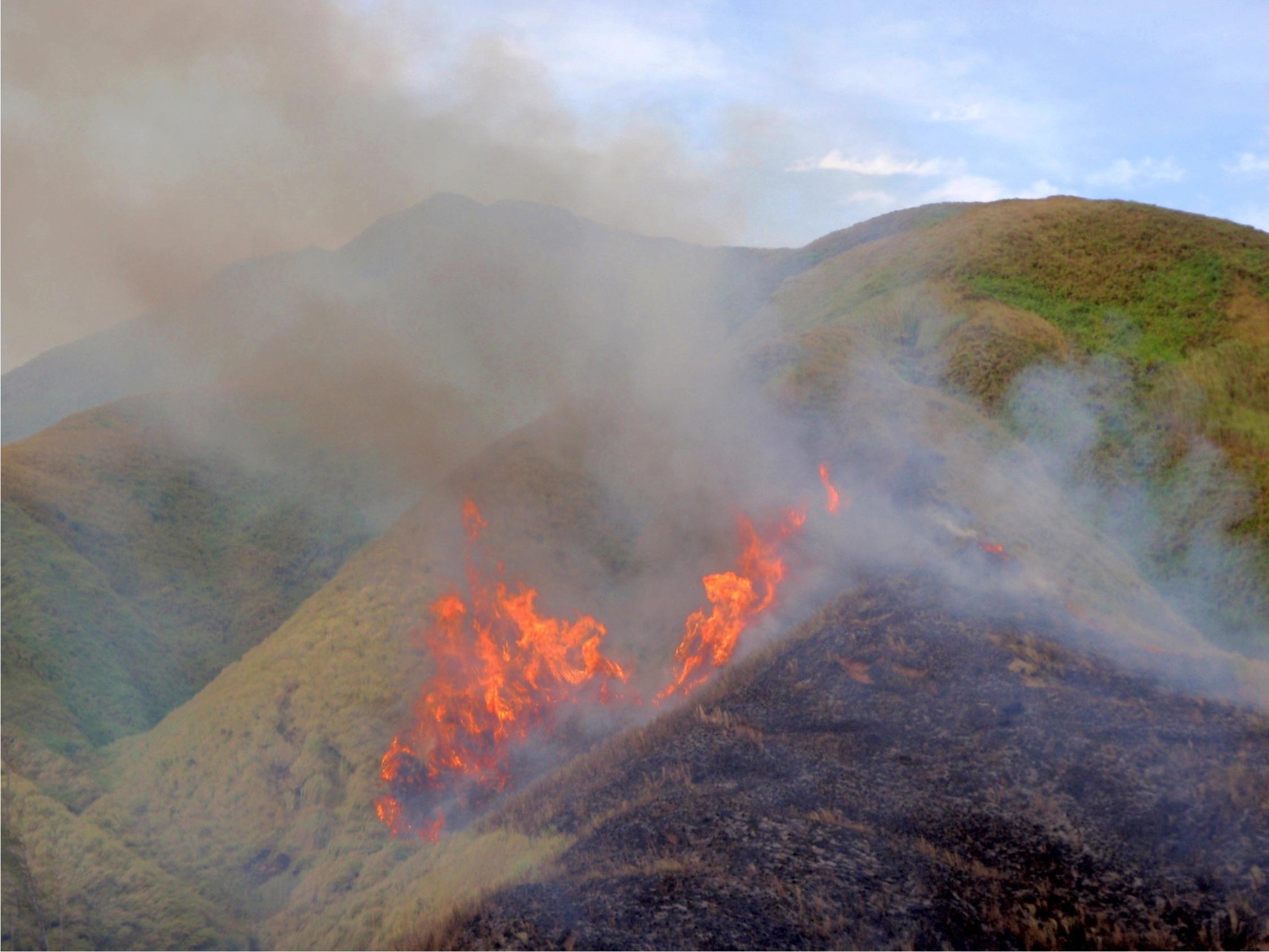 Wildfire in the upper La Sa Fu'a Watershed. Photo by R. Gavenda- USDA NRCS PIA