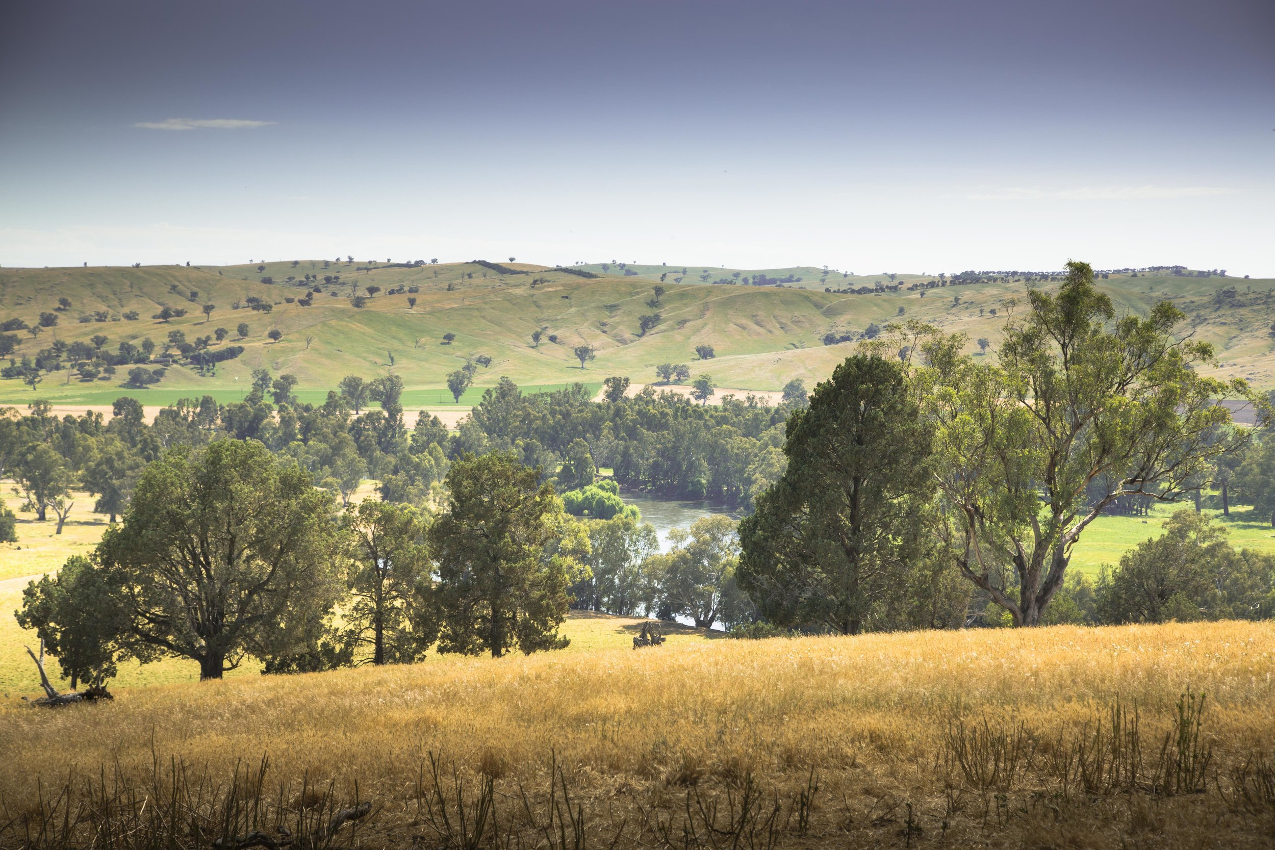 Yabtree West, NSW Australia