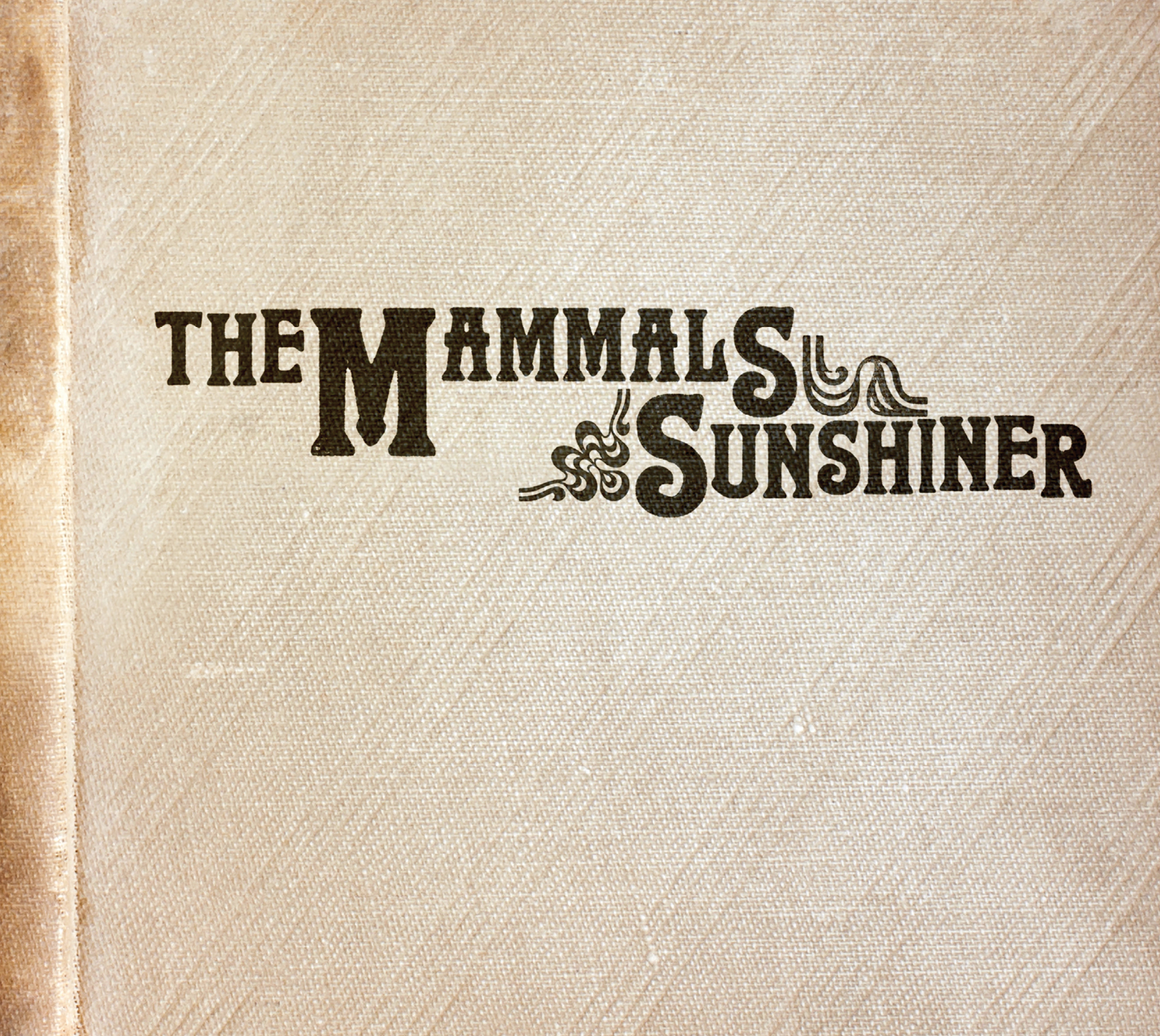 SunshinerAlbumCover.png