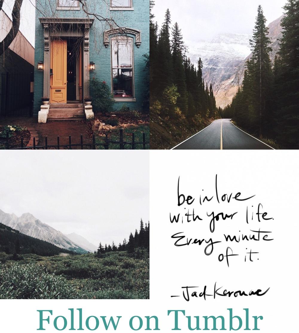 tumblr2.jpg