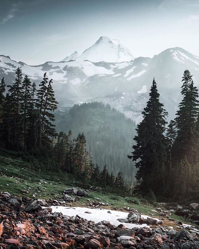 Dream scene 💫  This has us excited for trails to clear up on Mt Baker #WhereWeRoam  Ps. We're offering free shipping on all spruce & gunn orders for the summer! Link in bio 📷 by @torrey_merritt