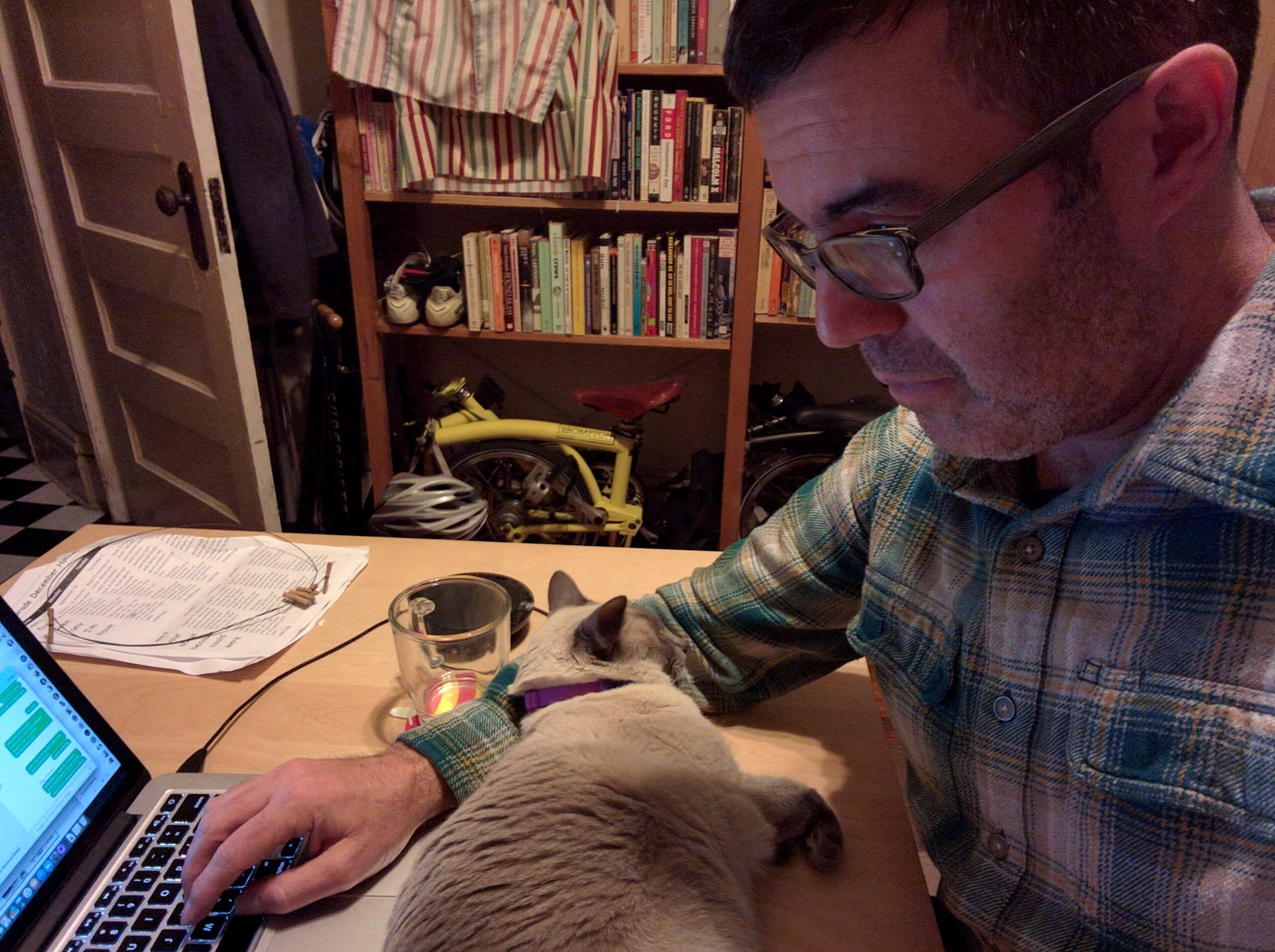 Lily desk job.jpg