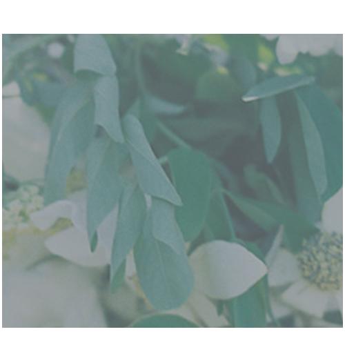 Grey-Likes-Weddings-Badge.png