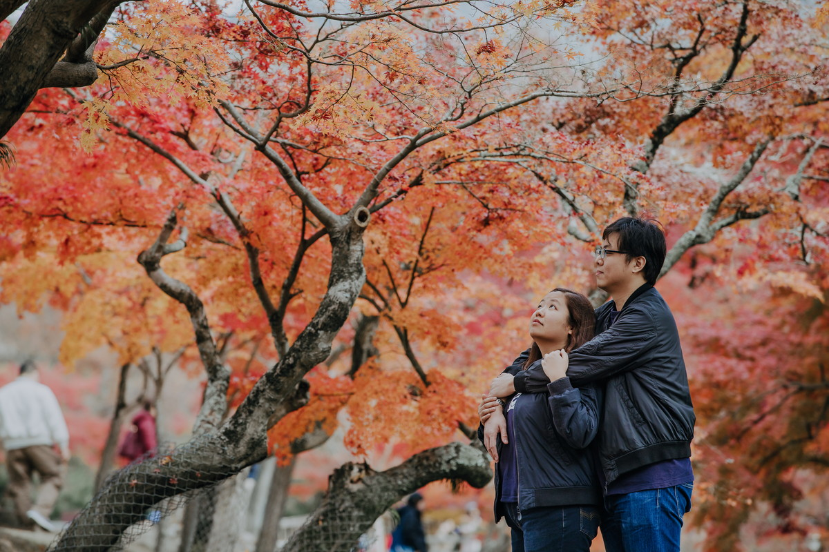 Special photo shooting for the tourists to Japan. - Join our special Engagement photo session with a beautiful background of MOMIJI/ KOYO or red leaves in JAPAN. Click the image for more detail.