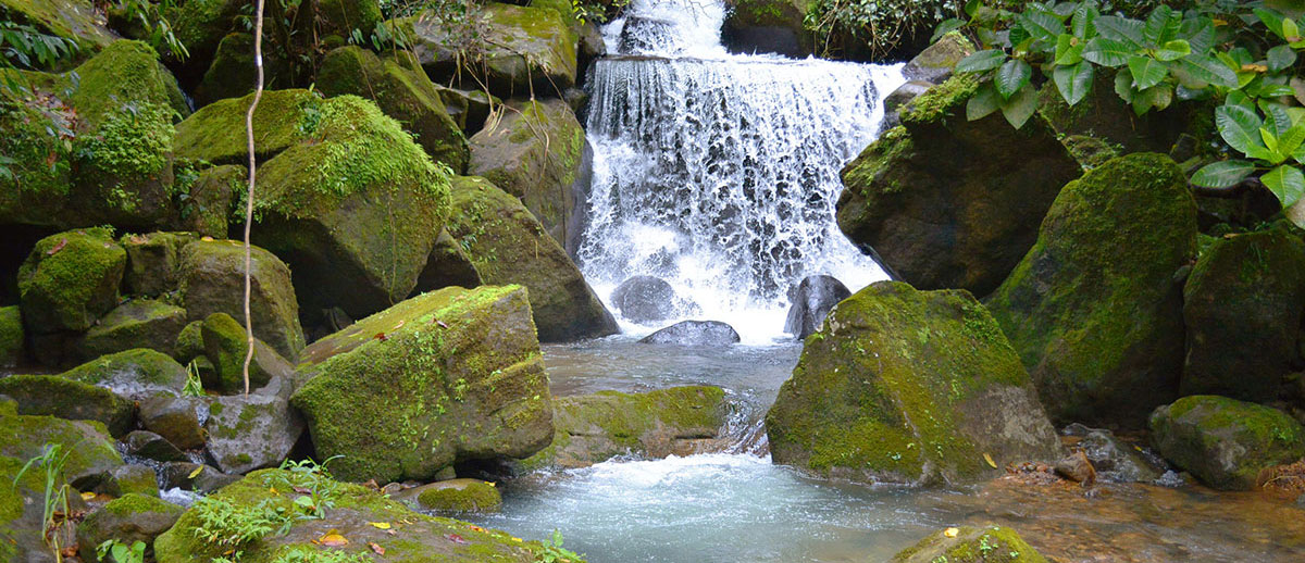 waterfall-manoas-luxury-camping-glamping.jpg