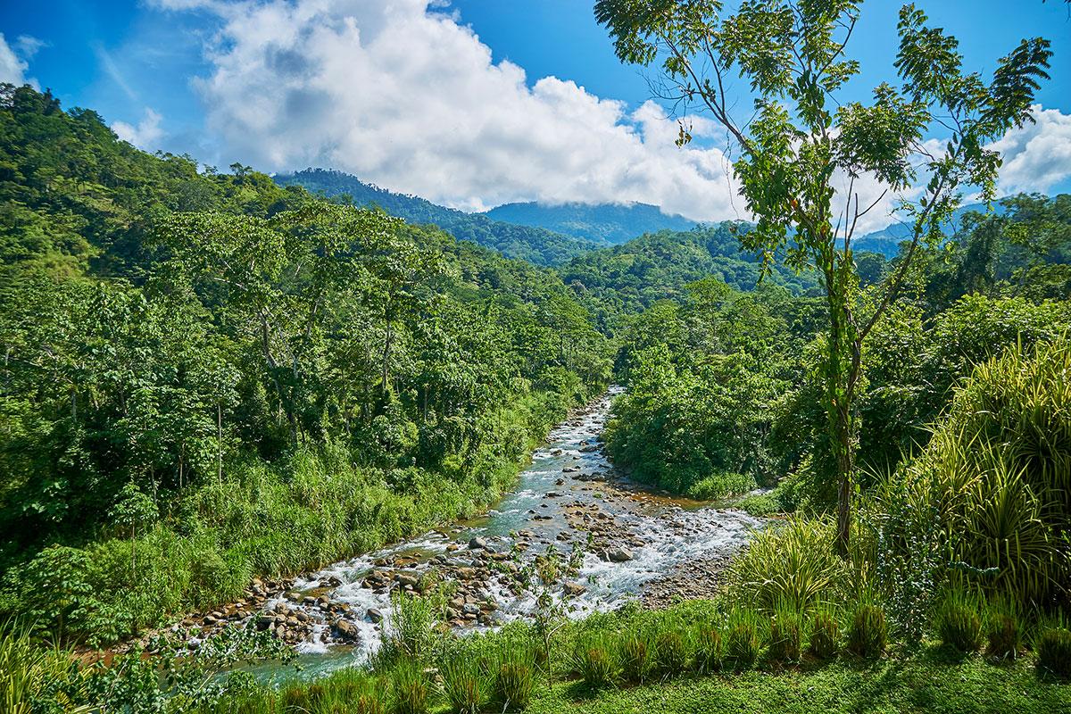 manoas-luxury-villas-casa-rio-river-2.jpg