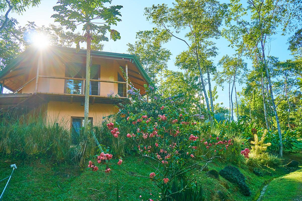 manoas-luxury-villas-casa-heliconia-2.jpg