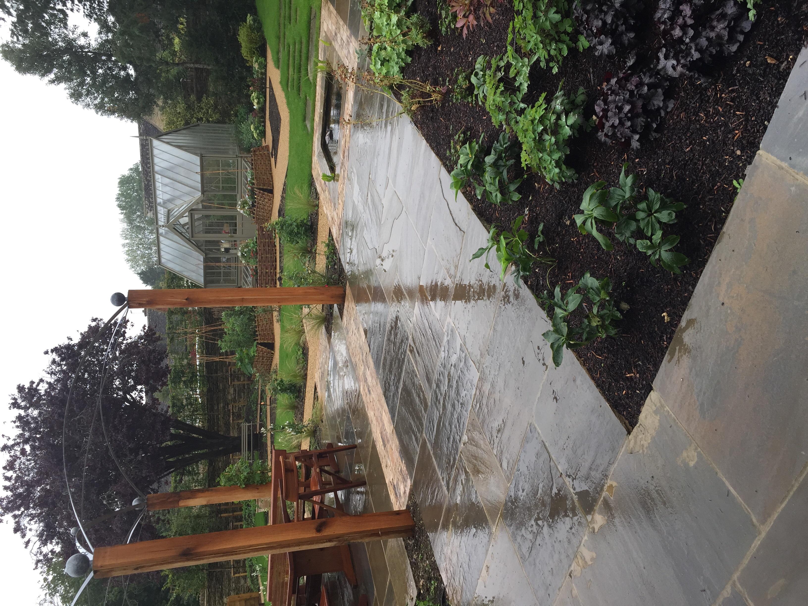 Back garden in the rain
