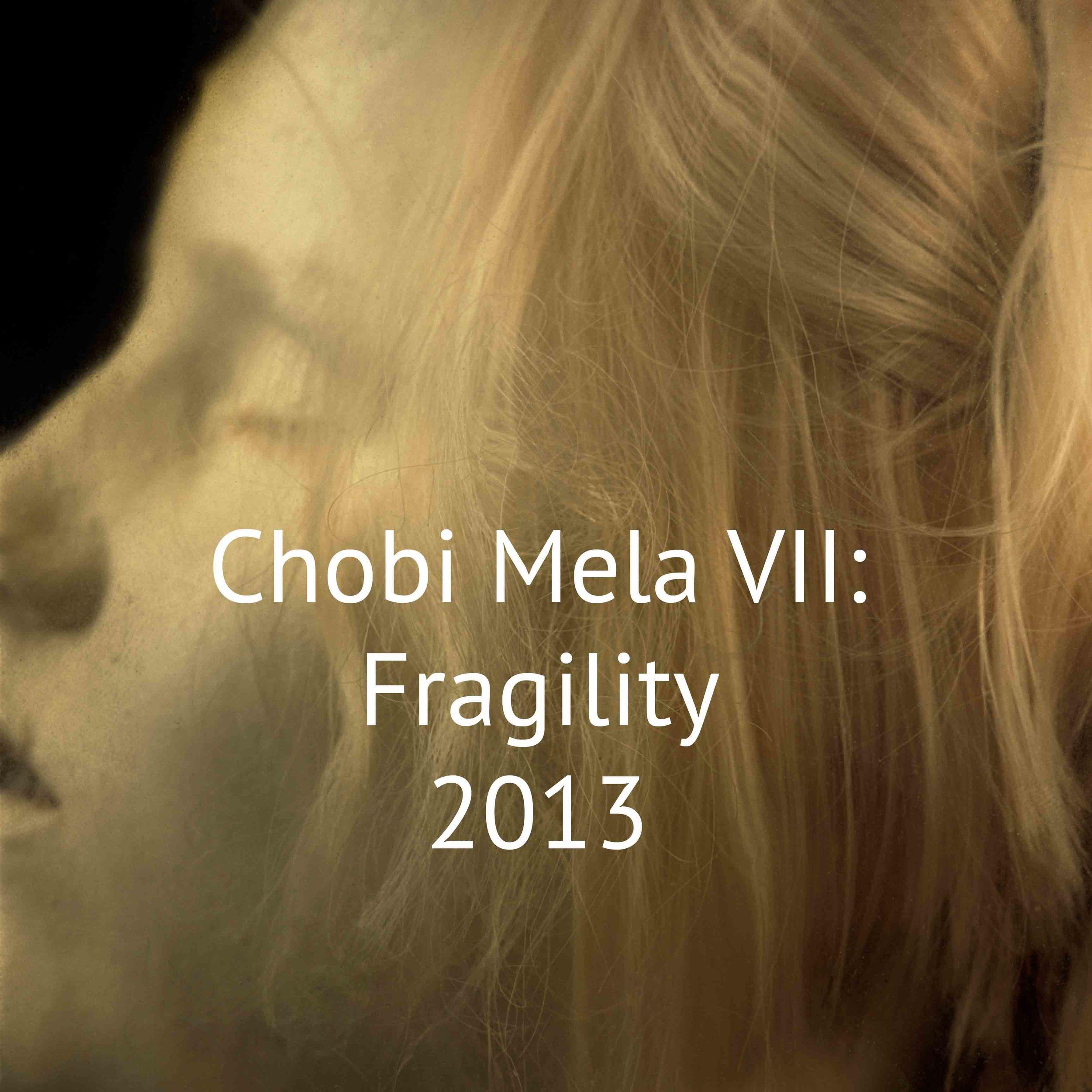Chobi Mela VII: Fragility