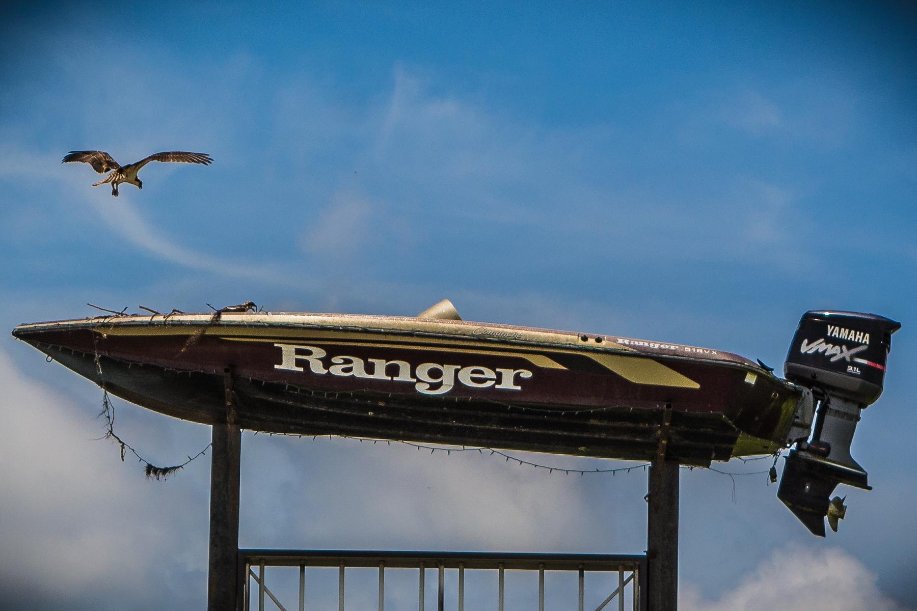 08) Flying Ranger.jpg