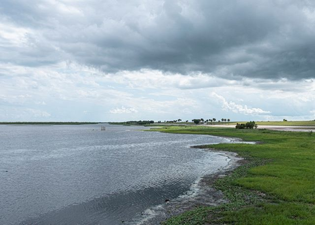 Lake Okeechobee shoreline courtesy of Ken Johnson  #lakeokeechobee #okeechobee #lake #florida #clouds