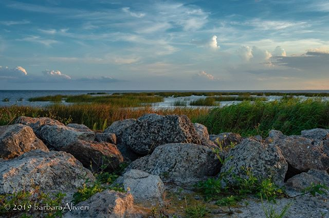 June Okeechobee Weekend - Courtesy of Barbara Livieri @blivieri