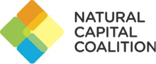 Capitalactiv is a member of the natural capital coalition -a global platform which brings together the many different initiatives and organizations working in natural capital under a common vision.  The World Business Council on Sustainable Development (WBCSD) is leading the development of a new protocol for valuing social capital in business.
