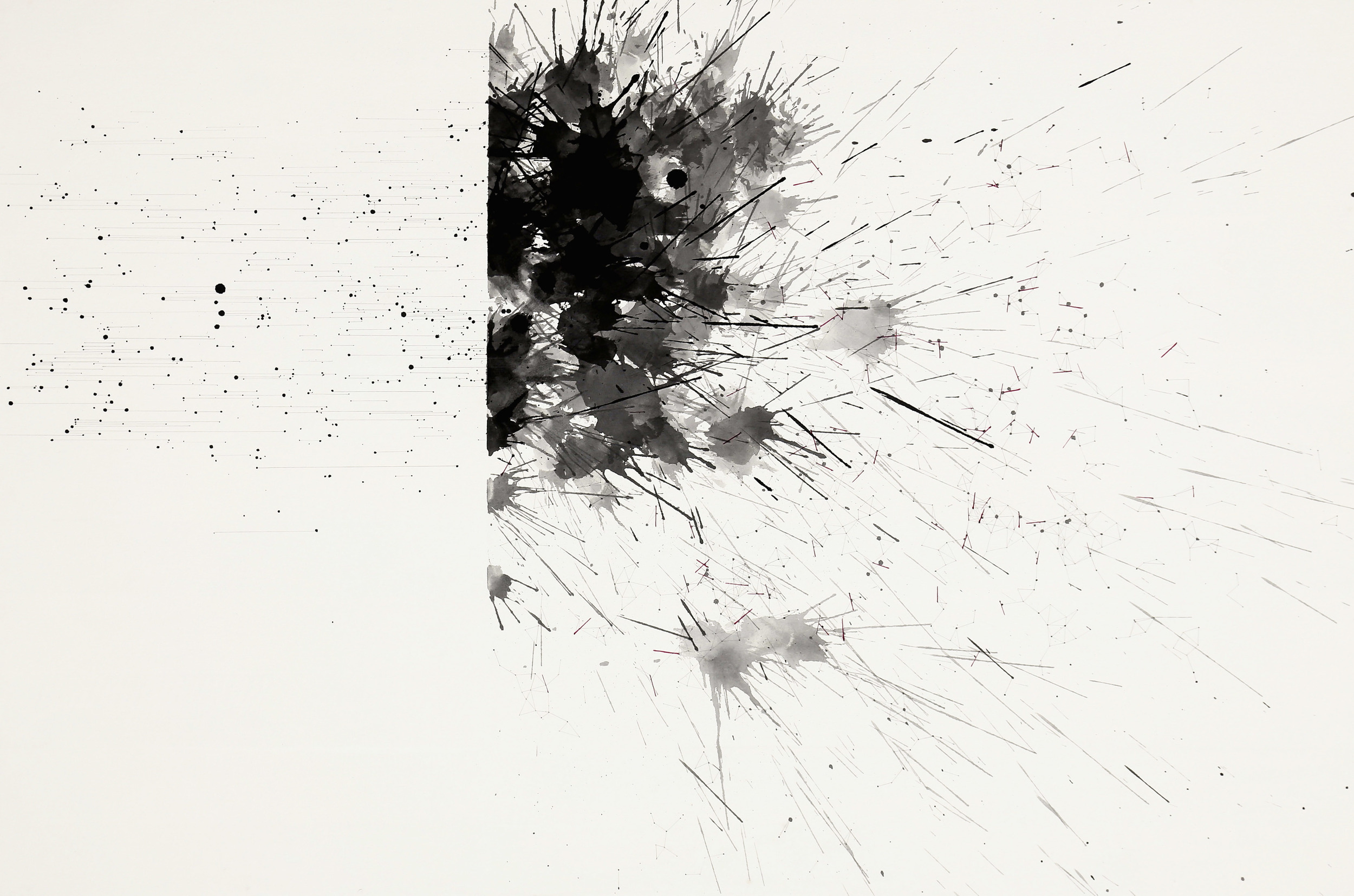 Chaos to order 2014. Ink, color pencil, and pencil on paper. 60 x 90 cm