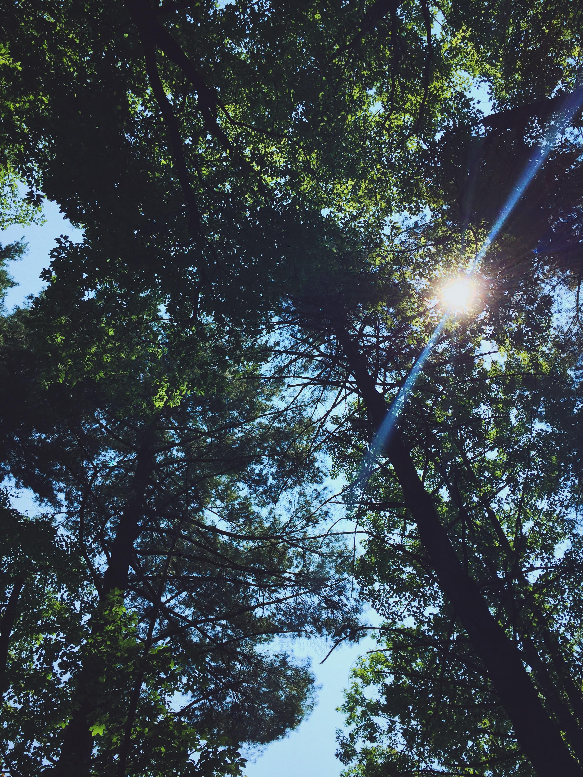 Photo Sep 04, 1 11 32 PM.jpg