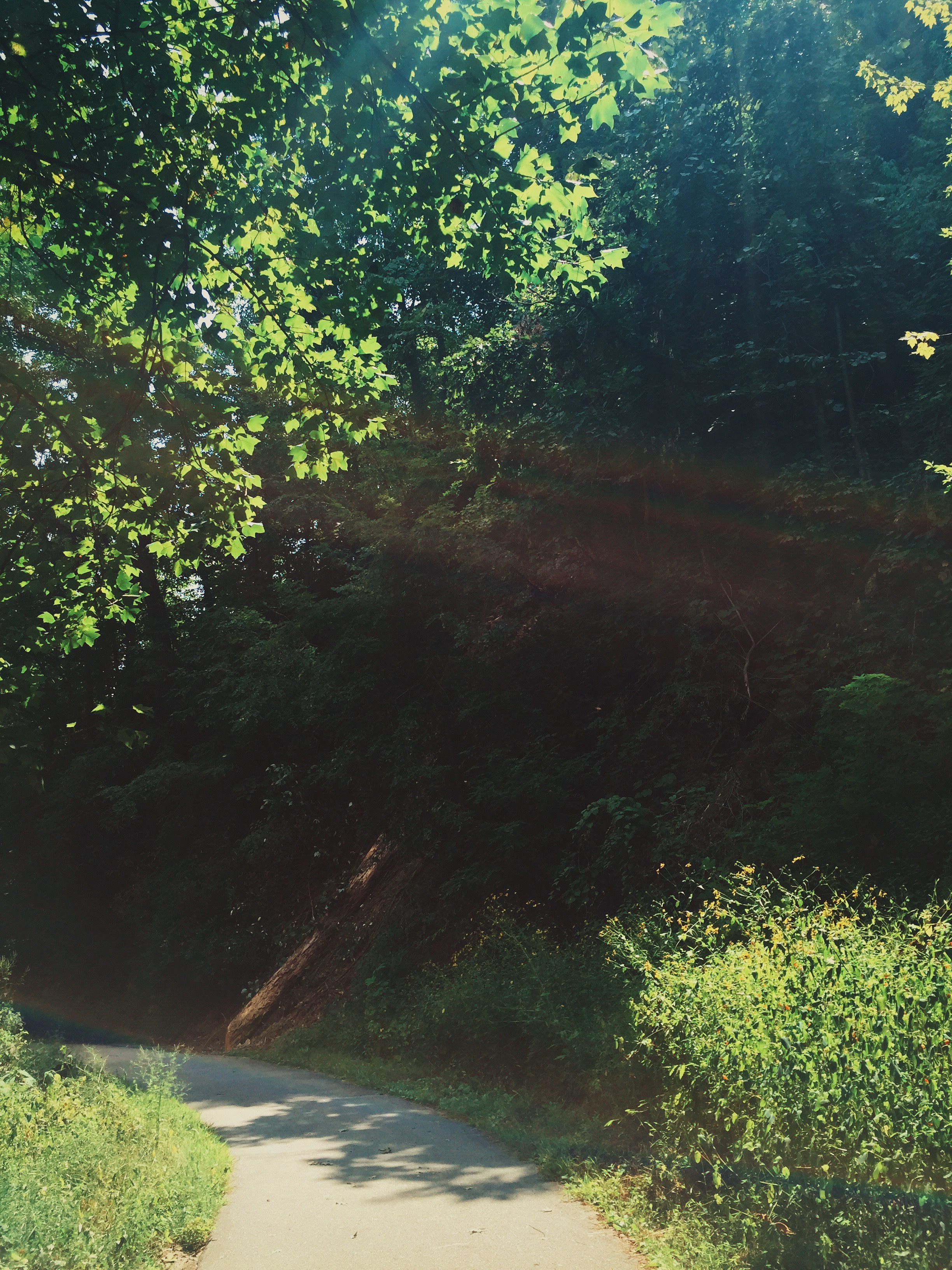 Photo Sep 04, 2 35 34 PM.jpg