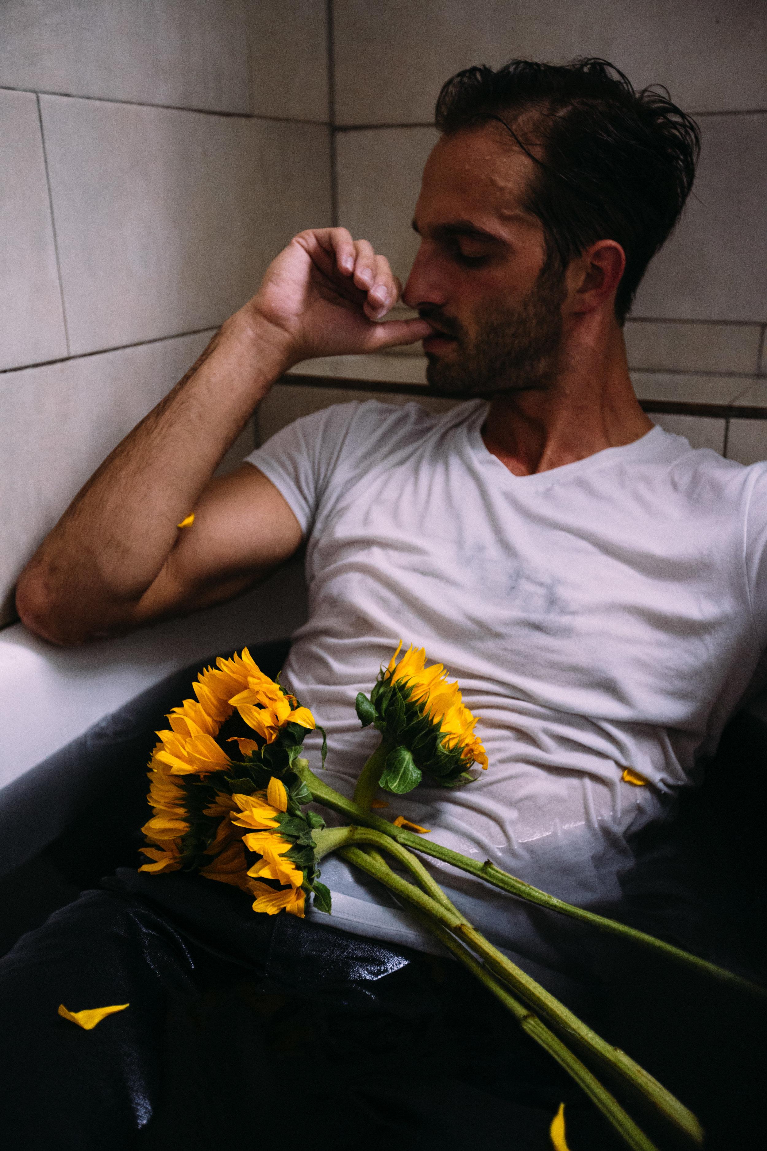 sunflowerday26.JPG