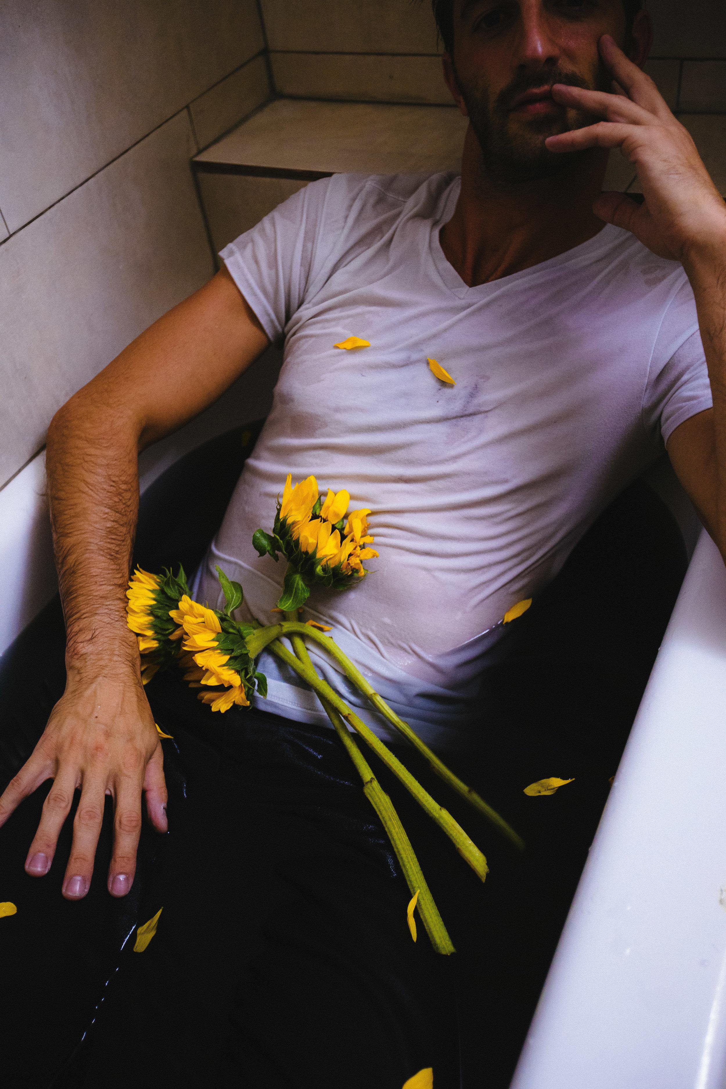 sunflowerday24.JPG
