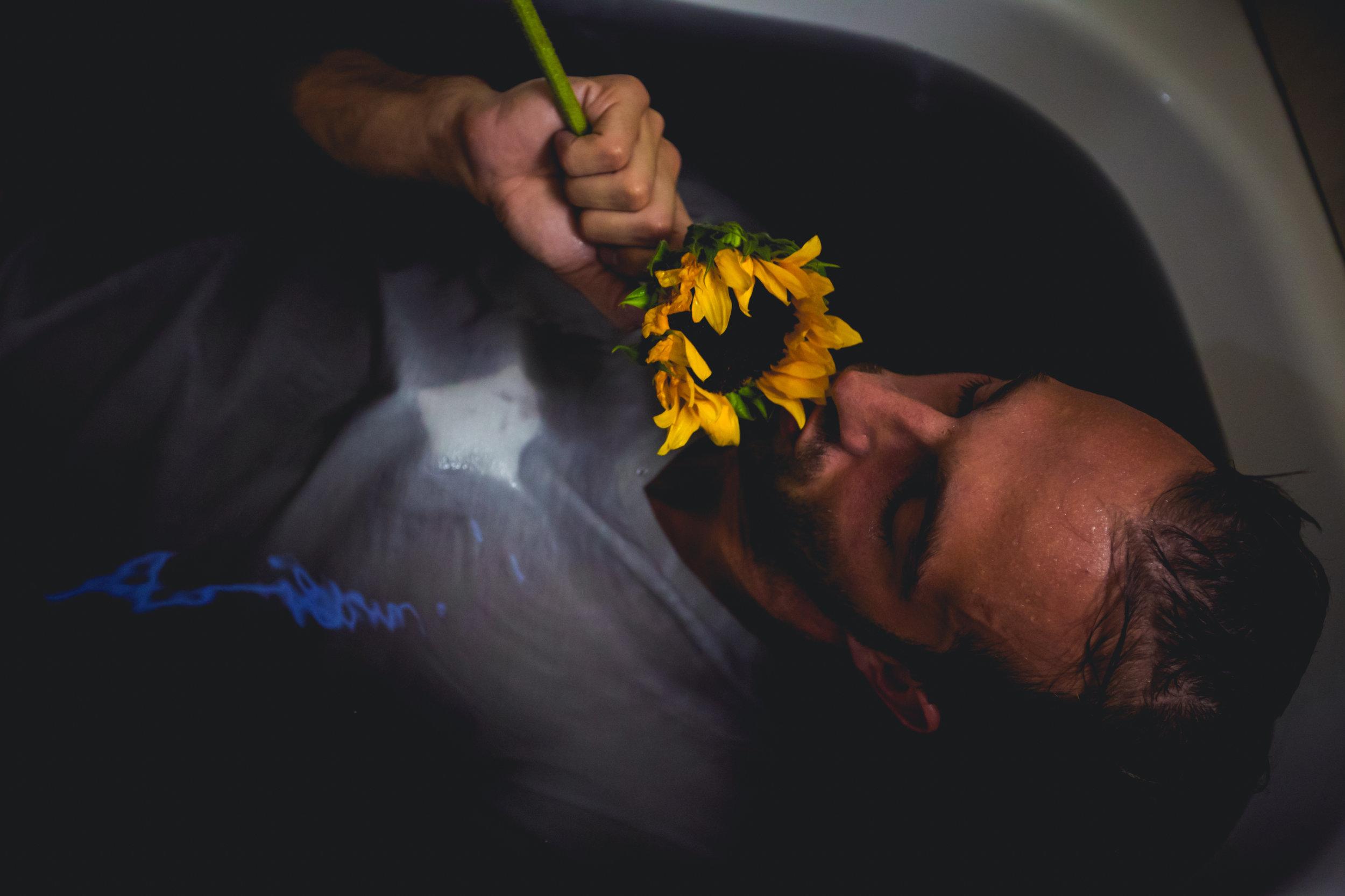 sunflowerday1.JPG
