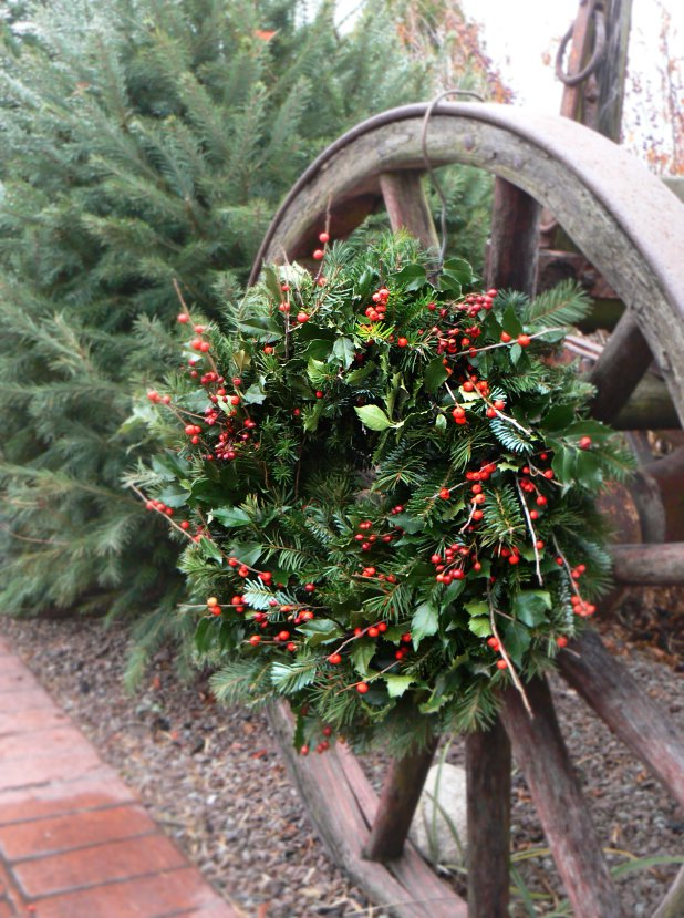 One of our handmade wreaths. We harvest most of our own greens, including boxwood, holly, fir, pine, dogwood, and rosehips. This is a ten inch wreath that also includes Ilex berries.
