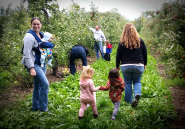 Apple Picking - Make memories with family and friends in our pick your own apple orchard! Enjoy a beautiful fall afternoon picking apples, surrounded by the aroma of Fall.