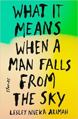 what-it-means-when-a-man-falls-from-the-sky-book-cover.jpeg