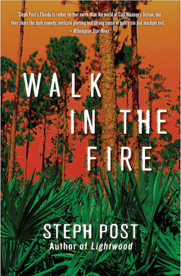 walk-in-the-fire-book-cover.png