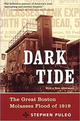 dark-tide-book-cover.jpg