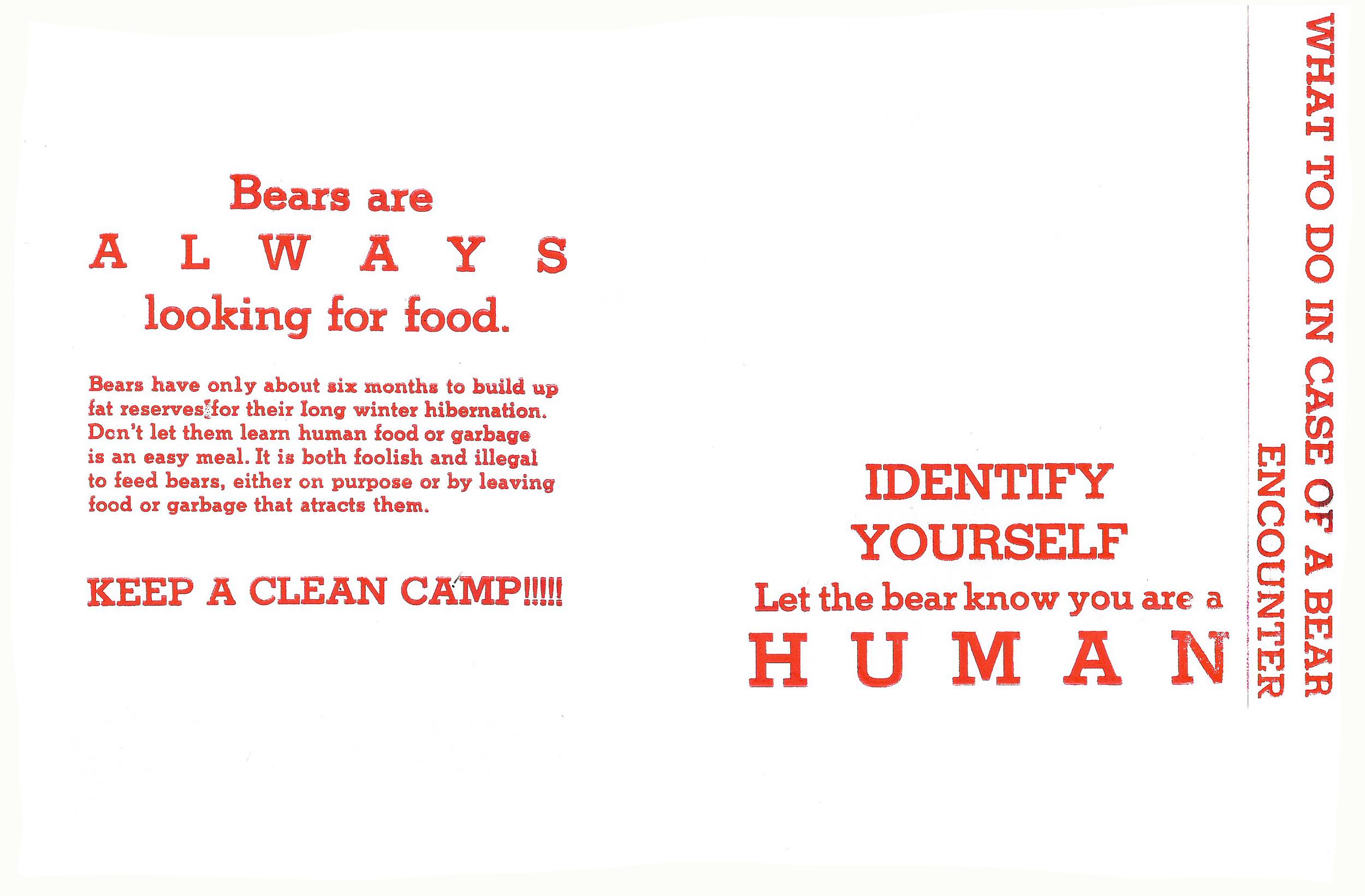 BEAR SAFETY 3.jpg