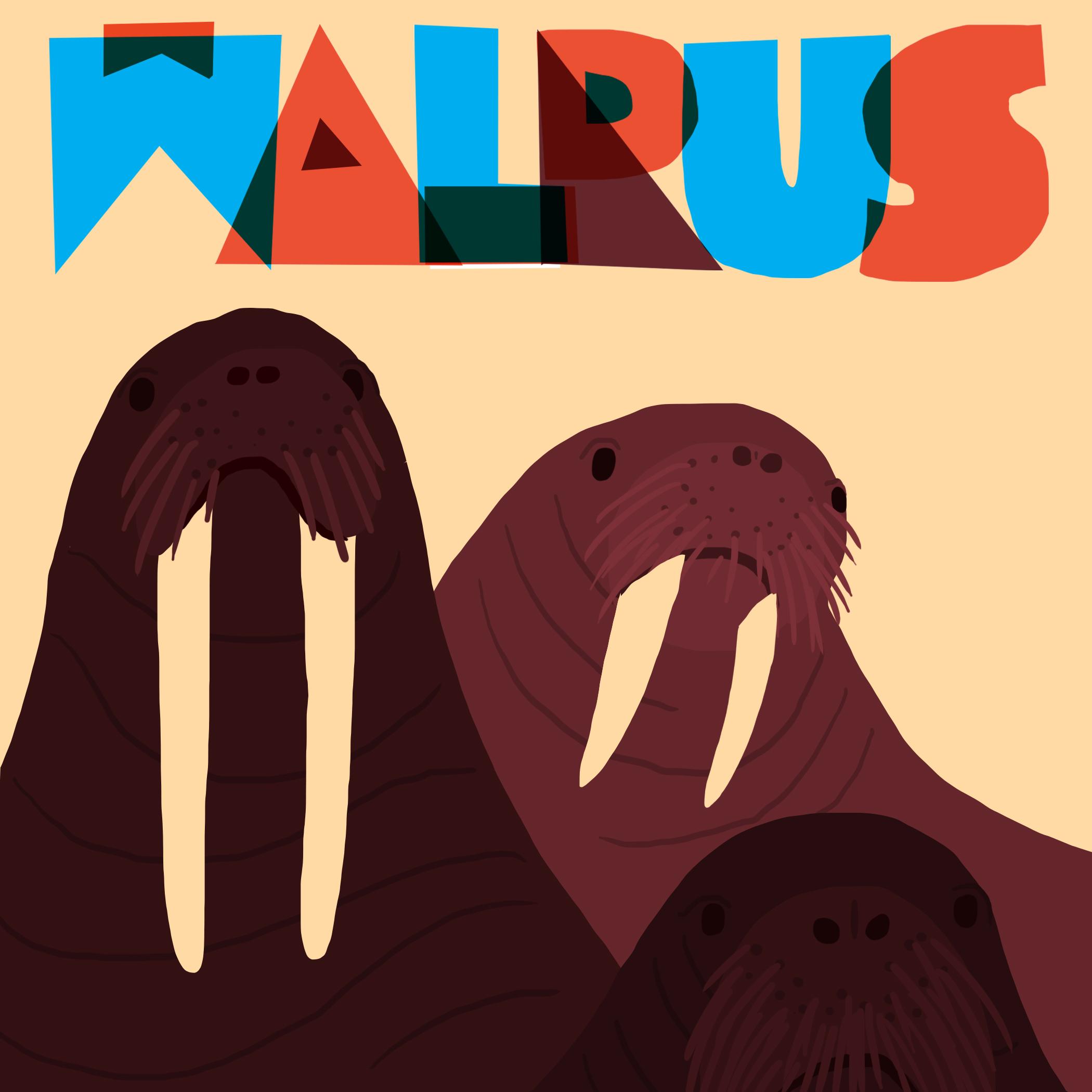 walrus social post.jpg