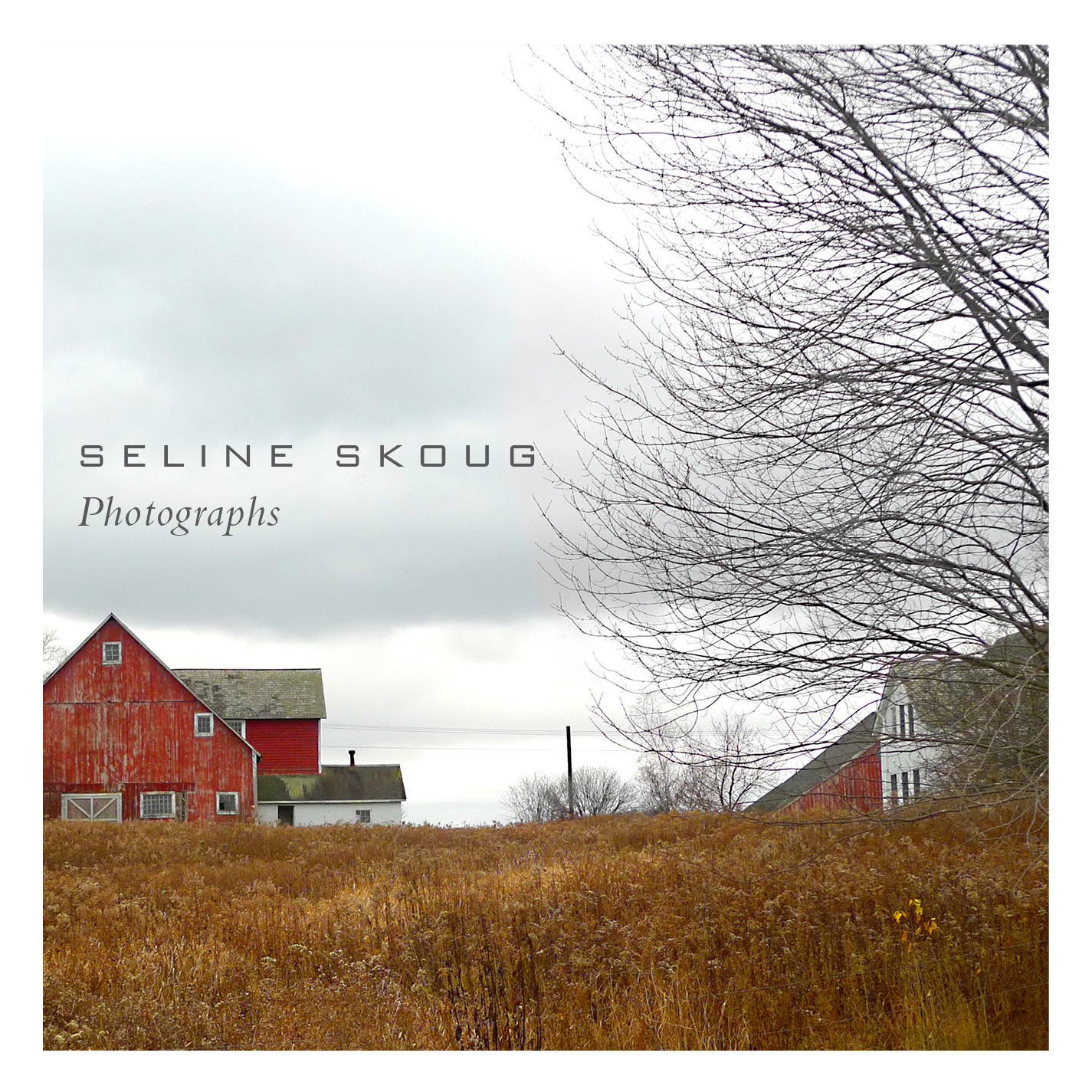 Seline Skoug Photography