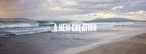 """When anyone is in Christ, they are a """"new creation."""" An in-depth examination of the amazing [but often-overlooked], regenerative work of the Holy Spirit in the life of God's children."""