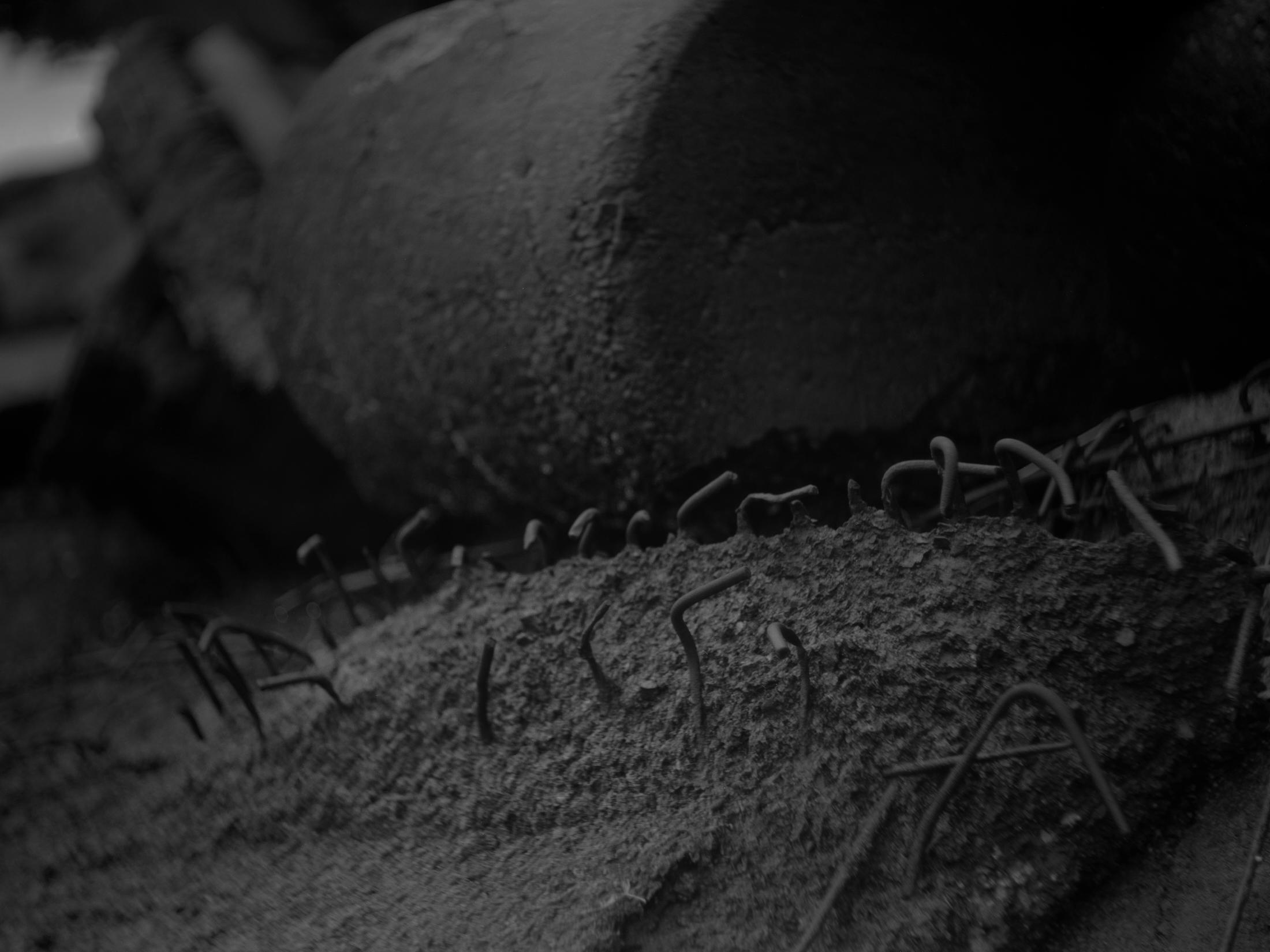 meniscus_bw_21 2.jpg