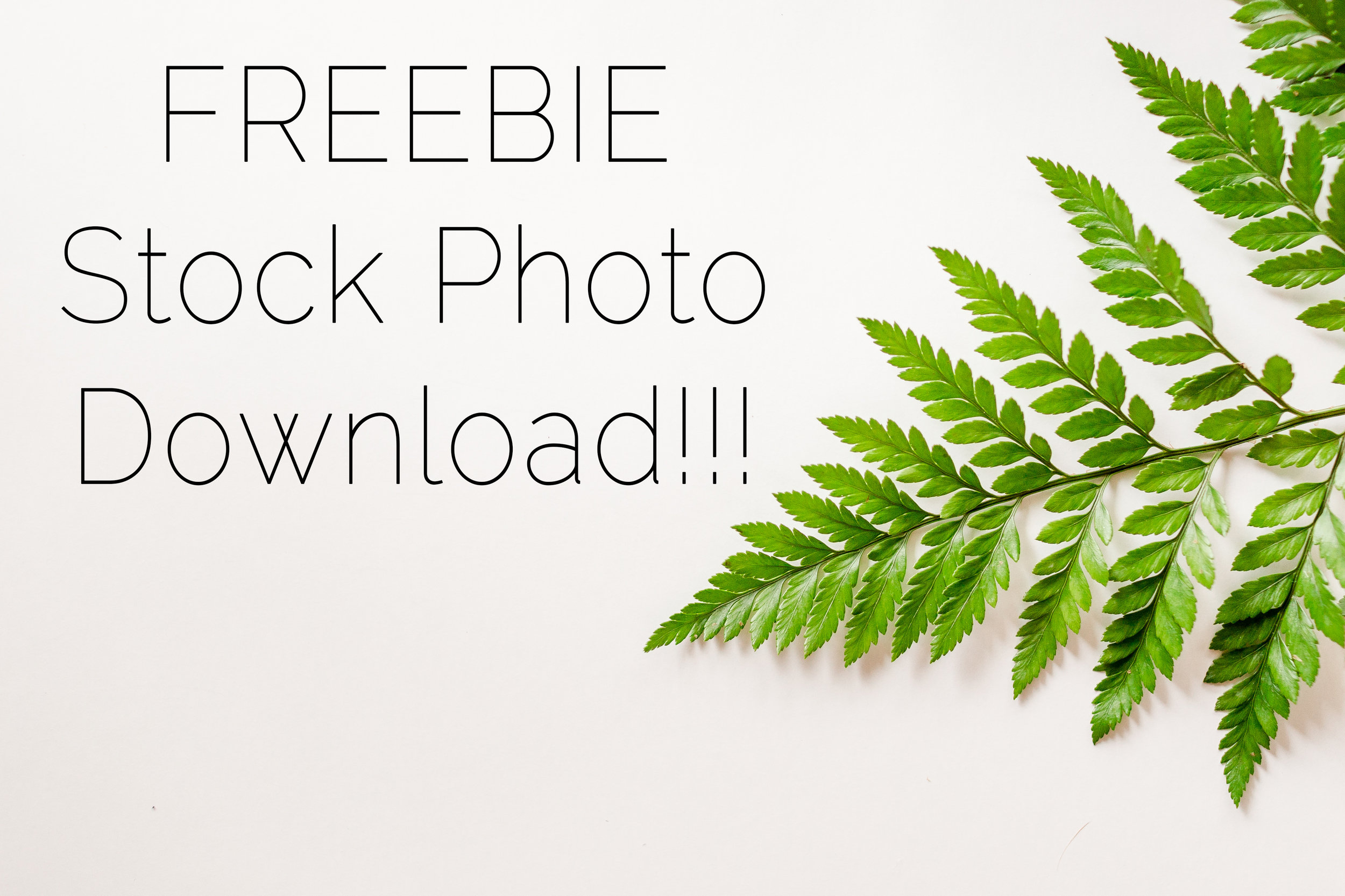 Click the Image for your freebies!