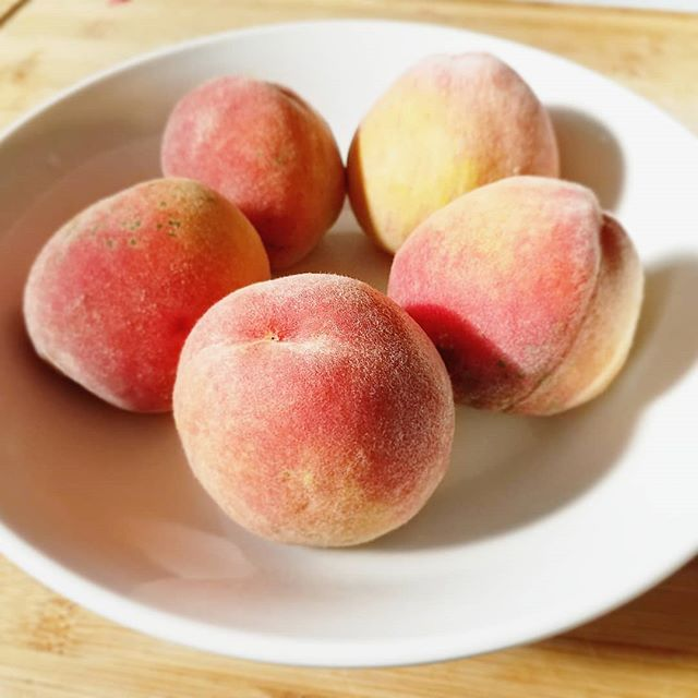Ummmm what?!? Our newly planted peach tree actually produced peaches this year!!! 🍑 I'm more excited than I should be about it ... I mean I'm basically homesteading. 😜 Sorry to everyone else in lower Michigan that had to go without this year. 🙈 . . . . . . . . . . . #ourlittlefamily #homestead #peaches #homegrown #freshpeaches #michiganpeaches #906life #yooper #basicallyafarmer  #homemade