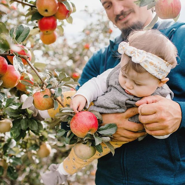 🍎 Apple pickin' with my two sweets.🍎 😍  Makes me want to start an #agritourism farm.... My hubby thinks I'm nuts. 😜 . . . . . . . . . . . . #applepicking #sundayfunday #farmfun #fallactivities #motherhood #babygirl #ourbabygirl #ourlittlefamily #pickingapples #funonthefarm #pleasantvieworchard #upperpeninsulaphotographer #familyphotography #michiganphotographer #familytime #ourtogetherness