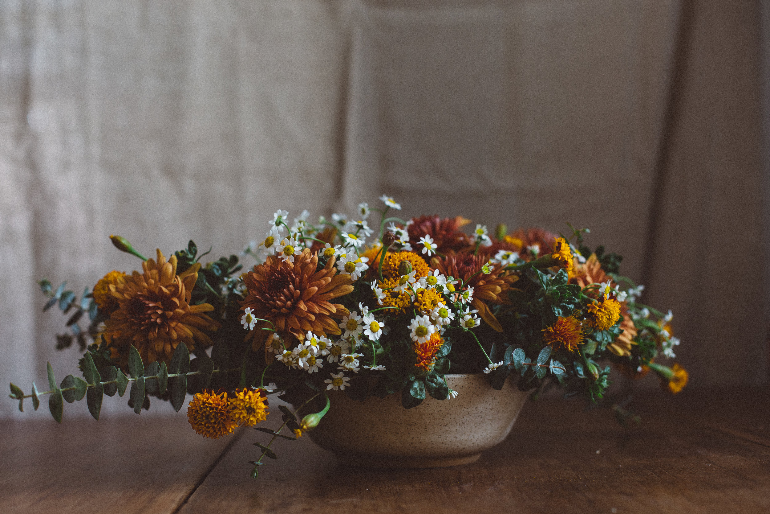 Your_Johnson_Flowers-8924.jpg