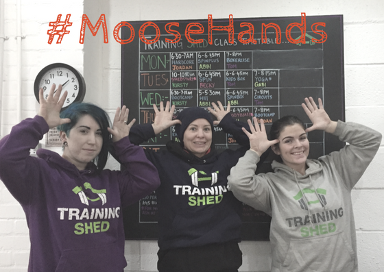 #MooseHands SHED.png