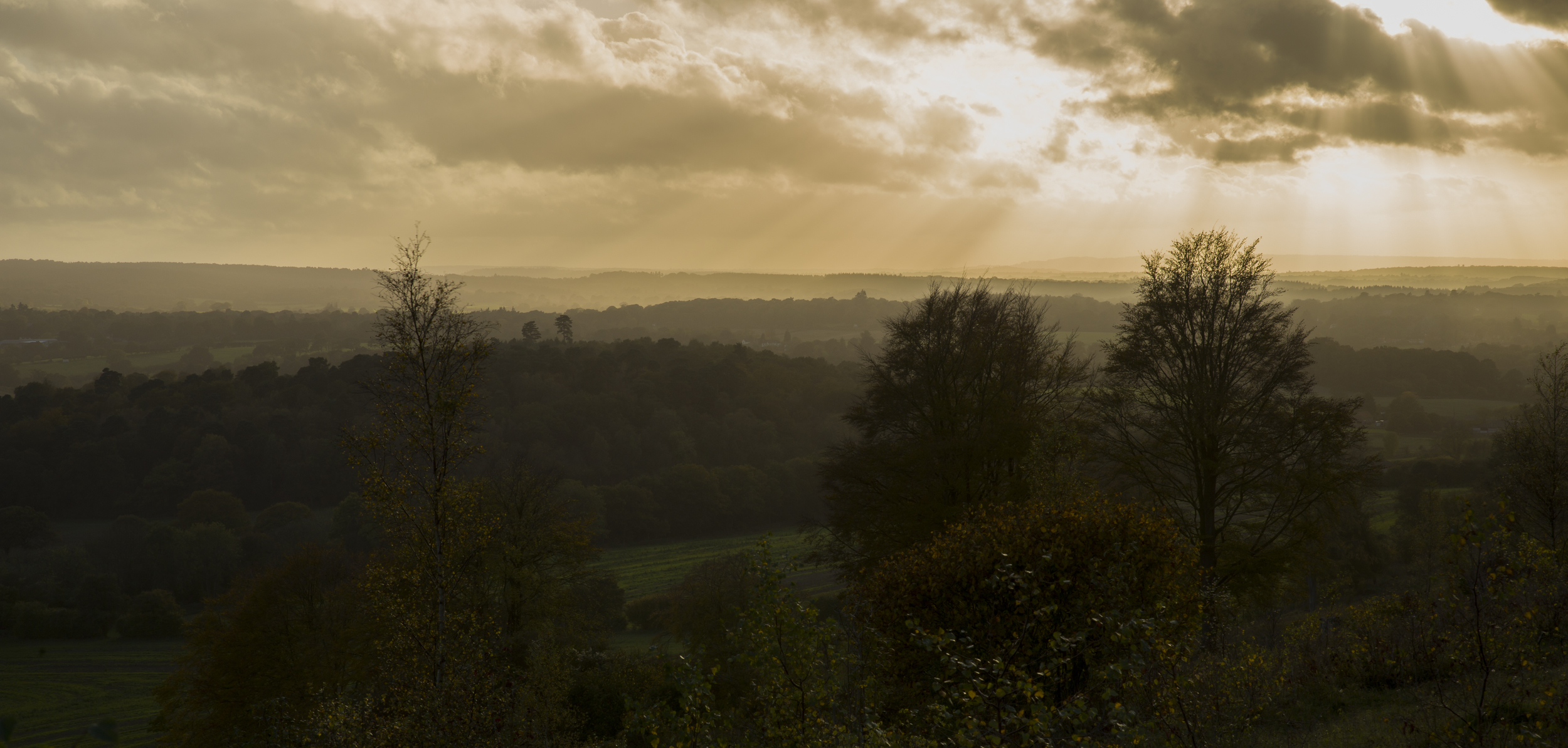 Taken on the North Downs Way, Ranmore, Surrey by Adam Plowden on Canon 5D mkIII and Tamron 24-70.