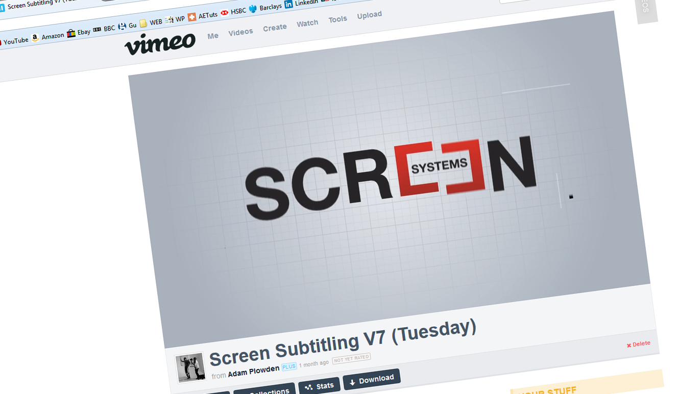 screen subtitling systems